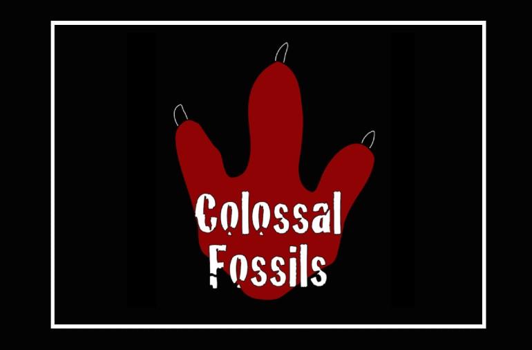 Colossal Fossils! Dinosaur Series: Oct. 12th – Nov. 5th